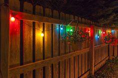 Scalloped Patio Lights Design