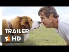 Starring: Britt Robertson, Josh Gad, Dennis Quaid A Dog's Purpose Official Trailer 1 - Dennis Quaid Movie A dog looks to discover his purpose in life . Streaming Movies, Hd Movies, Movies Online, Movie Tv, Netflix Movies, Watch Free Full Movies, Full Movies Download, Movies To Watch, A Dogs Purpose Movie