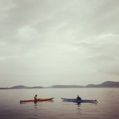 Kayaking in Telegraph Cove, British Columbia