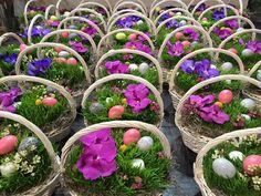 Novruz
