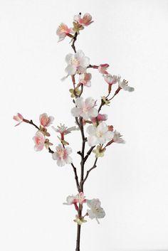€4.50 Kirsikkapuunoksa Roosa