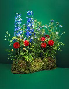 Flowers by Mark Colle. Composition: Delphinium, dahlia, nigella, myosotis, adianthum, moss