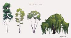 Tree Study by Naviira on DeviantArt