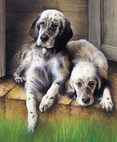 David Finney - Wildlife Artist & Illustrator | Pet Portraits