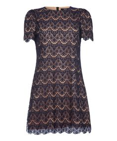 Navy & Brown Lace Dress