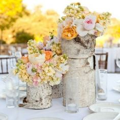 Birch bark vases: lovely for rustic wedding centerpieces!
