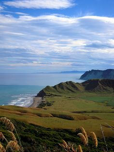 East Cape, New Zealand, everyone should drive the east coast. We stayed and rode horses on the beach