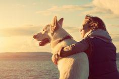 10 coisas que meu cachorro me ensinou: http://www.eusemfronteiras.com.br/10-coisas-que-meu-cachorro-me-ensinou/?utm_content=buffera8c0c&utm_medium=social&utm_source=facebook.com&utm_campaign=buffer #eusemfronteiras #cachorro #sentimentos #lições #vida #autoconhecimento