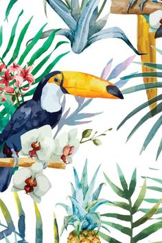 Pin by Annemarie Spaanderman on Wallpaper Wallpaper Backgrounds, Iphone Wallpaper, Wallpapers, Fimo Kawaii, Tropical Wallpaper, Tropical Art, Tropical Vibes, Bird Art, Painting & Drawing