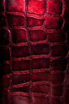 alligator skin by photofairy.deviantart.com