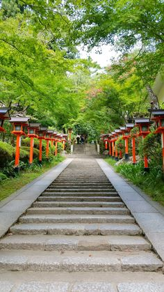 kyoto japan travel tips. japan things to do. travel inspiration. beautiful places to visit. east asia travel destinations. Tokyo To Kyoto, Tokyo Japan Travel, Japan Travel Tips, Kyoto Japan, Asia Travel, Japan Trip, Okinawa Japan, Beautiful Places To Visit, Cool Places To Visit