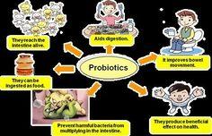 All about probiotics. What can you say about it?  Visit goprobioticbenefits.com  #probiotics #probioticskincare #probioticsupport #probioticsforlife #probioticsupplement #probioticsforthewin #probioticsoda #guthelath #probiotics101 #guthealthmatters #guthealthy #guthealthiskey #guthealthiseverything