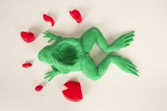 The+Frog+Dissection+Kit+by+MakerBot.