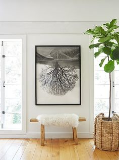 """""""I love to decorate with natural textures, neutral colors, art, and handmade objects, and those elements are all represented in the new living room,"""" Jenni says. This vignette—with its sheepskin-topped wooden bench, fiddle-leaf fig tree, and original art—incorporatesall her favorite things."""