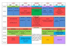 Nouveaux programmes : horaires et emploi du temps CE2 - CM1