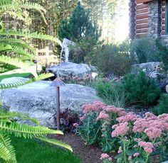 Nice rock garden.