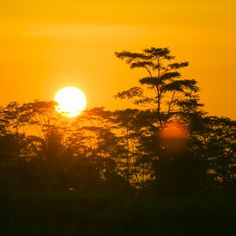 'Morning sun' on Picfair.com