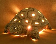 Tortoise nighlight found on Etsy #ad #Etsy #tortoise