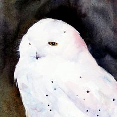 Hey, I found this really awesome Etsy listing at https://www.etsy.com/listing/115060683/snowy-owl-watercolor-bird-print-by-dean