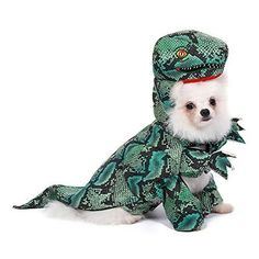 HIGH QUALITY: This dog cosplay costume is made of microfibre and polar fleece, the head of the dinosaur is stuffed with high quality cotton, soft and skin-friendly, brings your pet comfortable wearing experience. Dress Up Costumes, Cosplay Dress, Cosplay Costumes, Halloween Costume Shop, Halloween Cosplay, Halloween Party, Hoodie Outfit, Polar Fleece