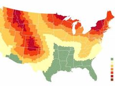 This map shows where and when to see the best fall foliage in the US