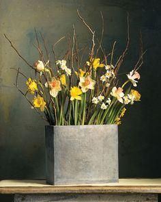 Martha Stewart Flower Arrangements | martha stewart daffodil and branch arrangement
