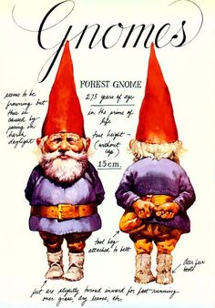 Gnomes, kabouters