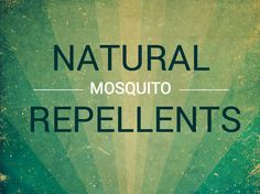 Before you grab that DEET-based mosquito repellent, consider using a natural option.