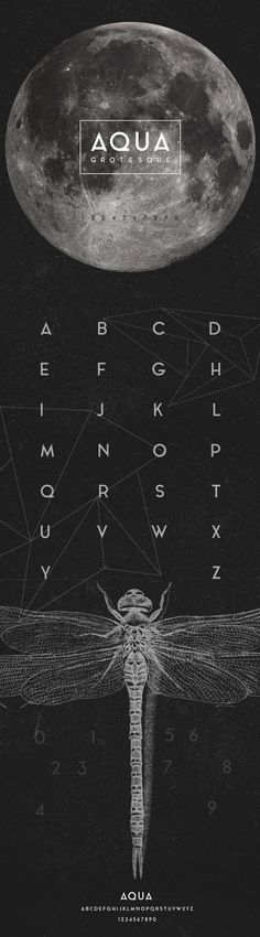 AQUA GROTESQUE TYPEFACE by Laura Pol, via Behance