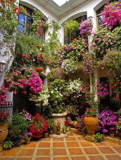 pictures of small atrium gardens. inspirational 1000 ideas about atrium garden on atrium Beautiful Gardens, Beautiful Flowers, Beautiful Homes, Beautiful Things, Outdoor Garden Decor, Outdoor Gardens, Dream Garden, Home And Garden, Hanging Flower Pots