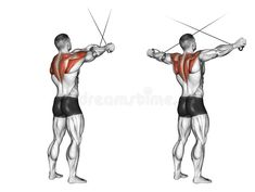 Cross hands ago from the upper blocks. Cross hands ago from the upper blocks. Exercising for bodybuilding. Target muscles are marked in red. Ace Fitness, Body Fitness, Physical Fitness, Cable Workout, Gym Workout Tips, Bodybuilding, Estilo Fitness, Back Exercises, Rhomboid Exercises