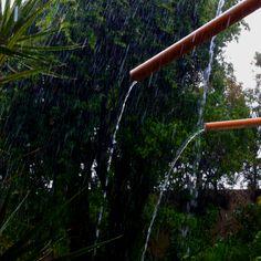 Primavera com chuva