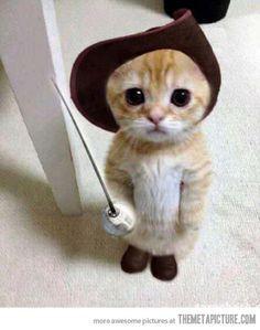 Puss...in Boots!! Soooooo cute!