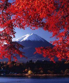 Autumn colors from the Fuji Five Lakes region (Fujigoko) around Mount Fuji, Japan