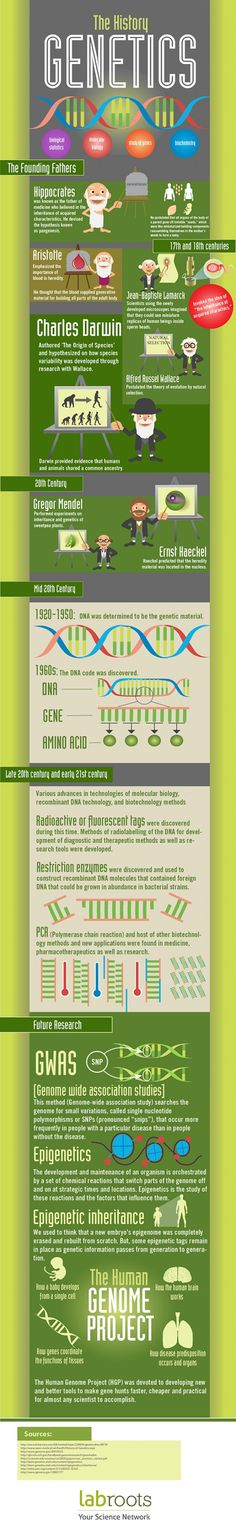 The History of Genetics Infographic
