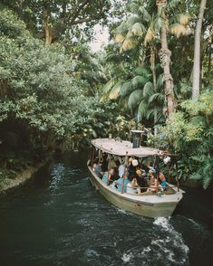 Jungle Cruise, Disneyland See this Instagram photo by @mike_pgregory • 1,593 likes