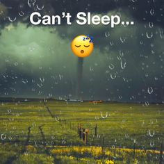 Struggle getting to sleep? Sleepiest can help; our bedtime stories, sounds and meditations will help you get to sleep fast. Sleep Pictures, Funny Animal Pictures, How To Sleep Faster, How To Get Sleep, Stupid Funny Memes, Wtf Funny, How To Fall Asleep Quickly, Lemon On Face, Johnny Depp Pictures