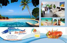 Wahoo Bay Ayiti Mountains Behind Pinterest