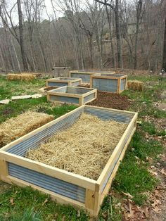 Corrugated Steel, Raised Bed Gardening, Modern Architecture, Wood |  Allotment | Pinterest | Gardens, Raised Beds And Raised Garden Beds