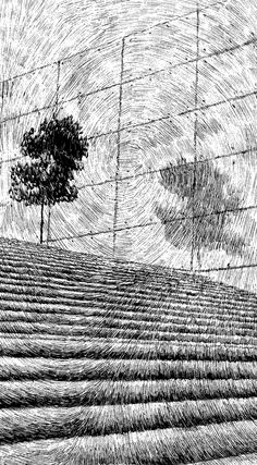 Nicholas Jolly--zoom1