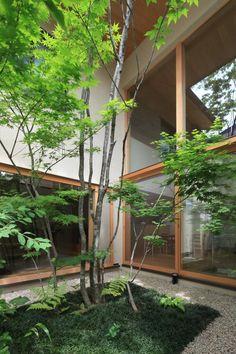 八尾の家|横内敏人建築設計事務所 Atrium Garden, Indoor Garden, Landscape Architecture Design, House Landscape, Zen House, Japan Garden, Planting Plan, Japanese Garden Design, Small Backyard Landscaping