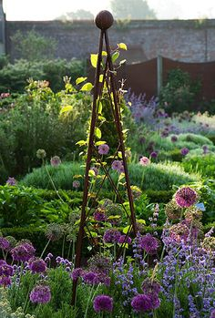 Designer: Jan howard - metal tripod in early morning light with allium 'purple sensation' and nepeta