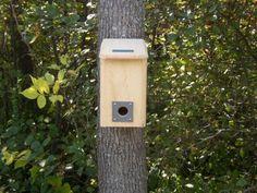 Amazon.com : Winter Roost : Bird Houses : Patio, Lawn & Garden