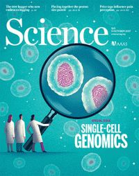 Neandertal genome reveals greater legacy in the living http://science.sciencemag.org/content/358/6359/21