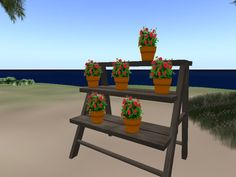 Potted Plant Shelves