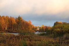 Ruska,syksy,Pyhäjoki, Pohjoishaara