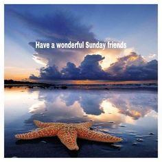 ❥ Happy Sunday to you!