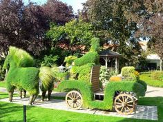 Topiary horse and cart