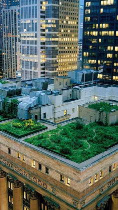 ↑↑TAP AND GET THE FREE APP! City Garden on the Roof Green Awesome Park Skyscraper Architecture Lights HD iPhone 6 plus Wallpaper