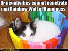 Your negativity cannot penetrate my rainbow wall of Happiness!